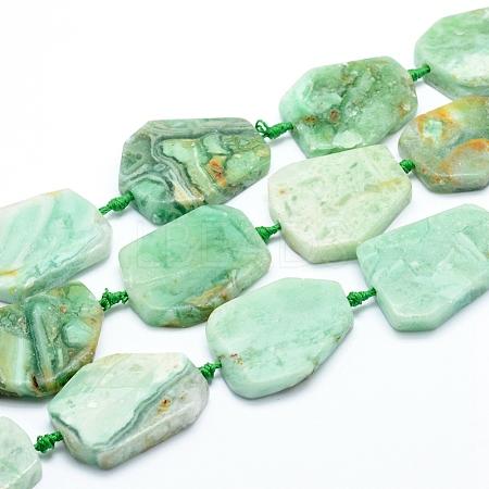 Natural Gemstone Beads StrandsG-L551A-02-1