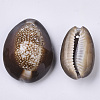 Natural Cowrie Shell Pendants X-SSHEL-N034-24-3