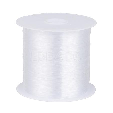 1 Roll Transparent Fishing Thread Nylon WireX-NWIR-R0.25MM-1