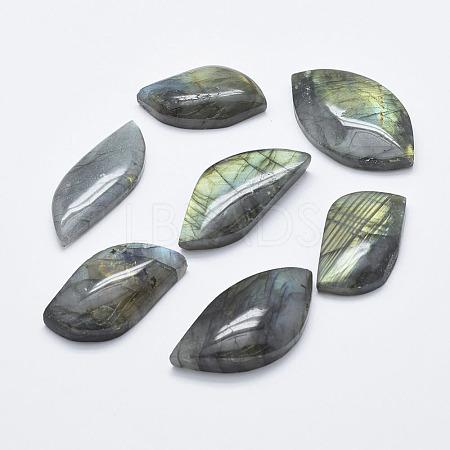 Natural Labradorite CabochonsX-G-K246-50B-1