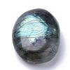 Natural Labradorite DecorationsG-S282-40-3