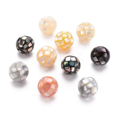 Natural Mixed Shell BeadsSSHEL-T014-37-12mm-1