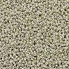 MIYUKI Round Rocailles BeadsX-SEED-G007-RR0181-2